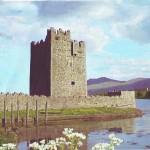 Narrow Water Castle Co Down