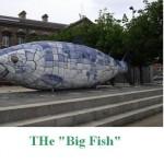The Bigfish Belfast
